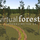 virtual-forest-2.0